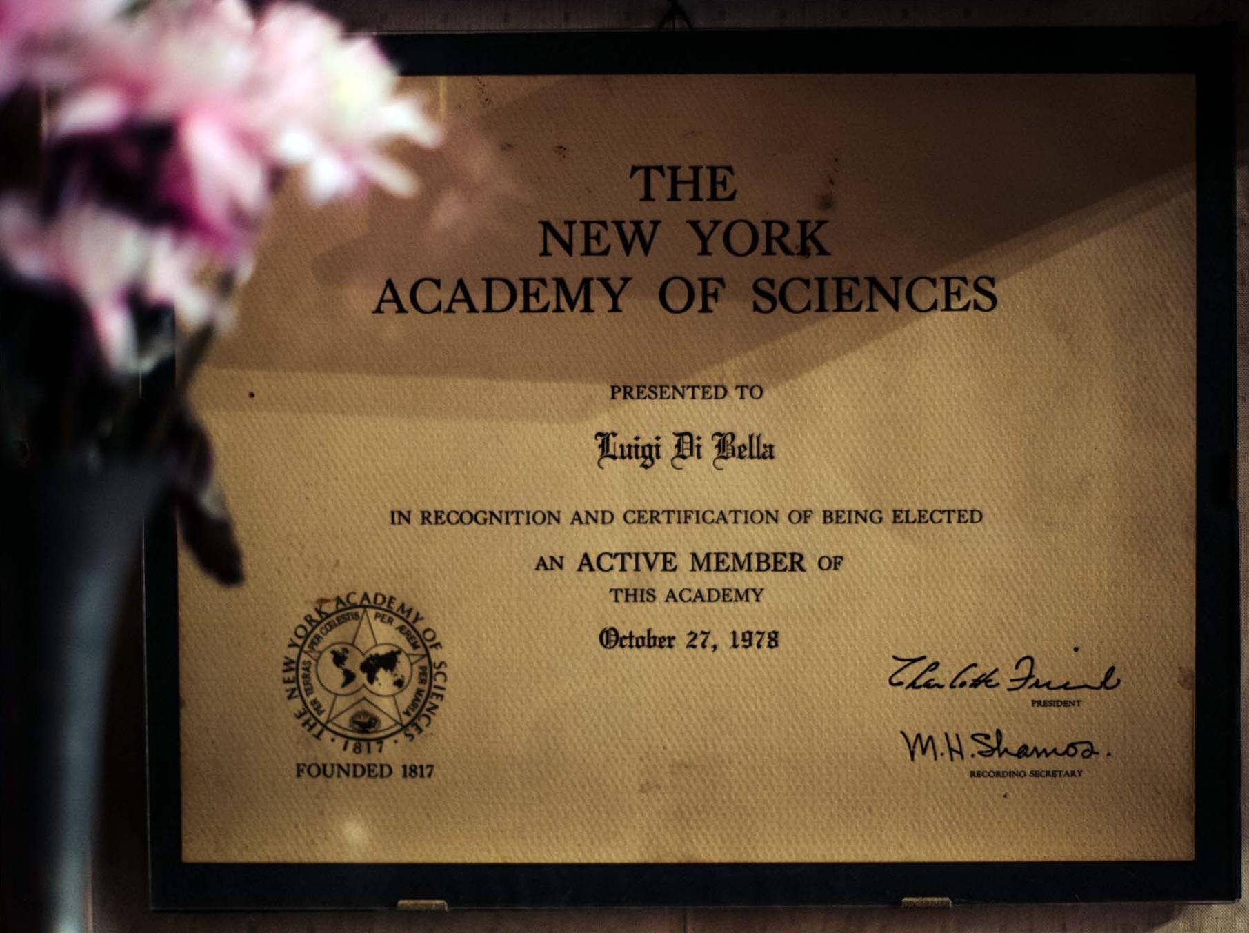 The New York Academy of Sciences.